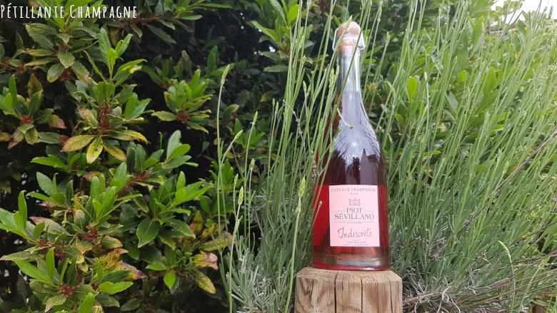 Coteaux Champenois Rosé Piot-Sevillano